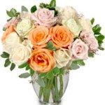 alabaster roses